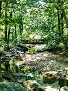 Sligo Creek Trail