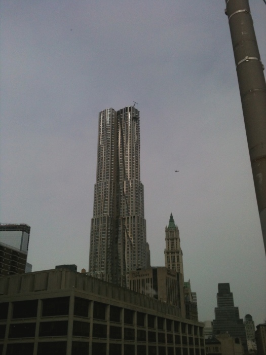 New York by Frank Gehry