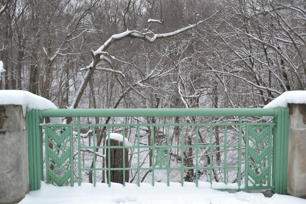 Bridge Fence and Snow