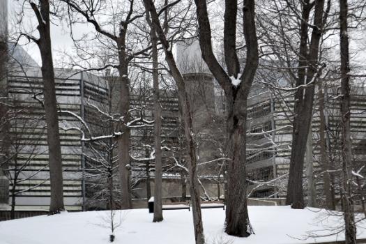 Snowy Intelsat